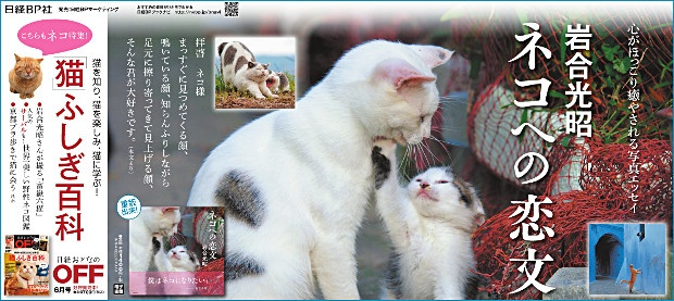 2017年5月14日掲載 日本経済新聞 朝刊